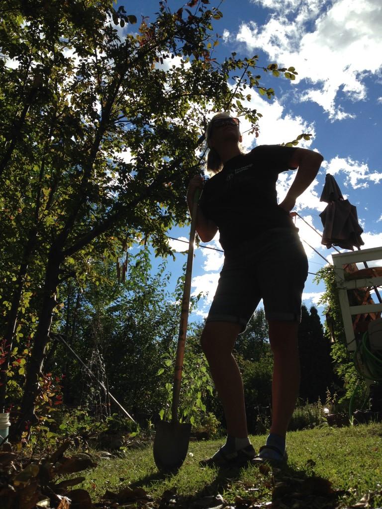 Intrepid gardener in silhouette
